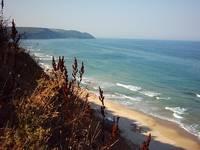 coast-iko