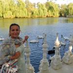 Езеро с лебеди